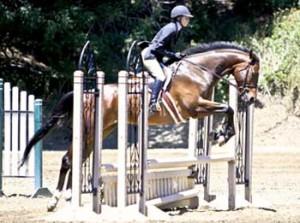 Santa Clarita Hunter Jumper Equitation horse riding lessons at Summerhill Equestrian Center with Donna Wilke