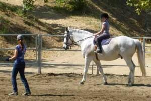 Santa Clarita, CA  english horseback riding lessons and training